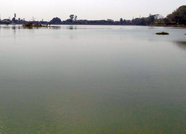 Peace Ride: Restoration of Sankey Tank, Malleshwaram