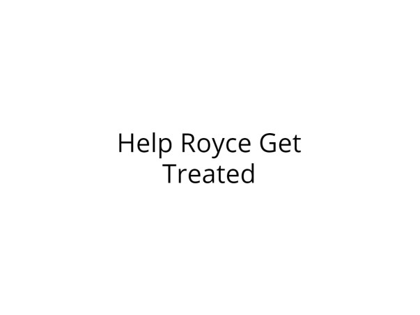 Help Royce Undergo Bone Marrow Transplant