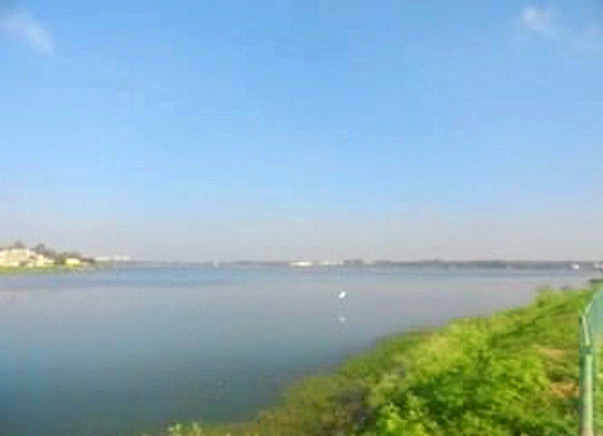 Bengaluru Marathon: Lake Rejuvenation, Yellahanka