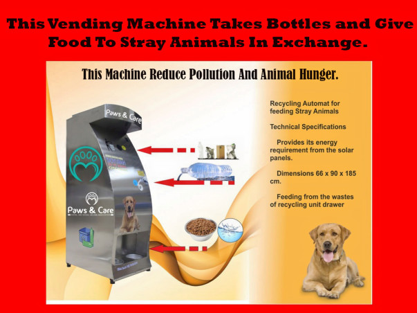 Food Vending Machine For Stray Animals