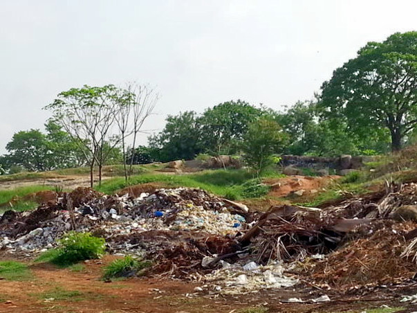 Help Us Save Lalbagh And Make Bengaluru Cleaner And Greener.
