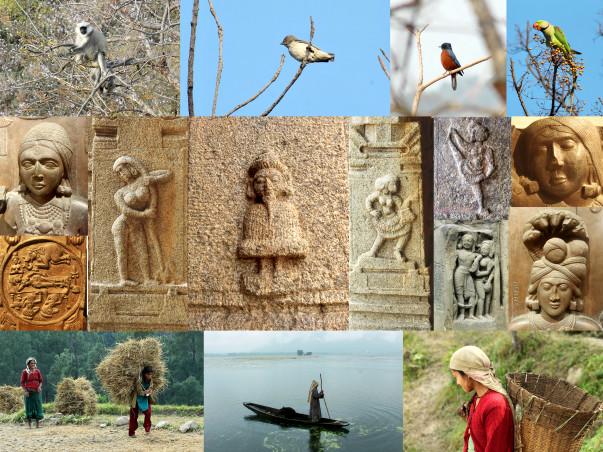 Creating Video History/ Documentation of Indian Culture