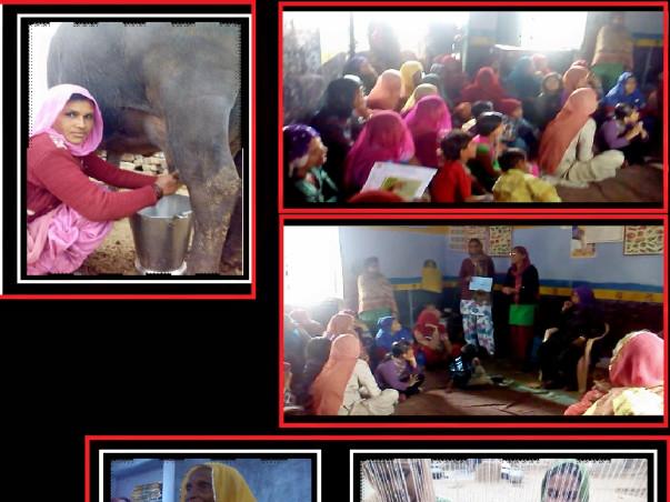 Project Naari - Support the women of Dhigarla