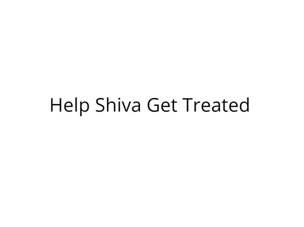 Help Shiva Undergo Kidney Transplant