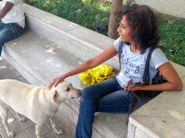 Support Rama Feed The Strays Of Mumbai