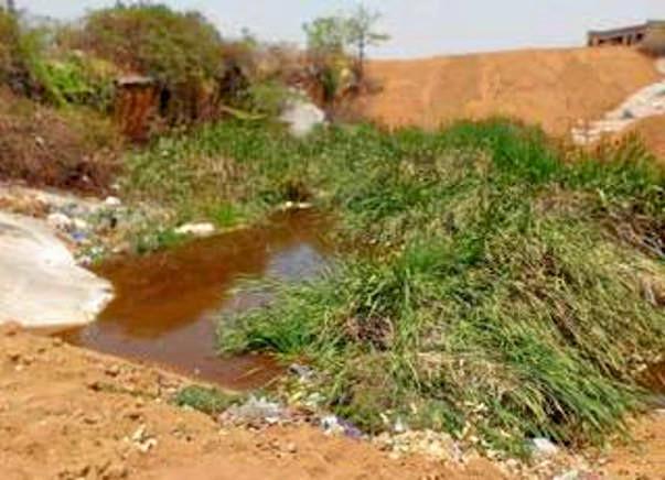 Peace Ride: Rejuvenate the park & pond ecosystem in Gubbalala