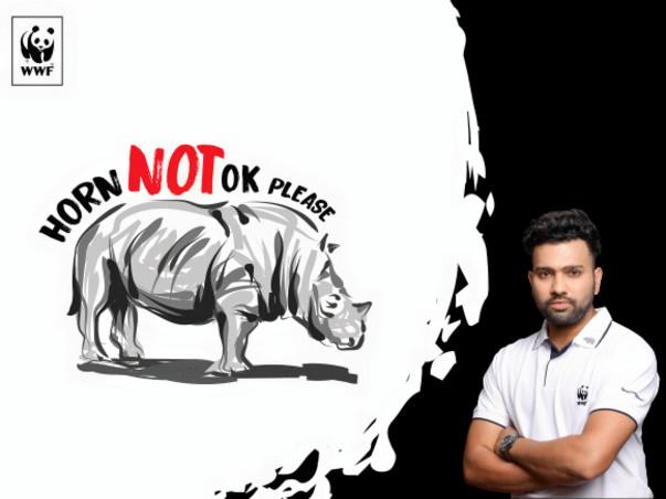 Saving the Indian Rhino