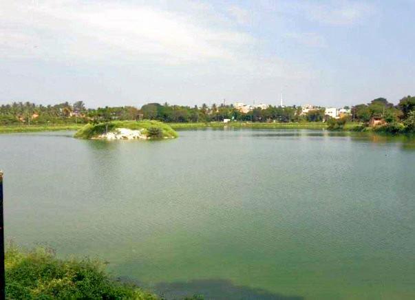 Peace Ride: Rejuvenate Kaudenahalli Lake, KR Puram