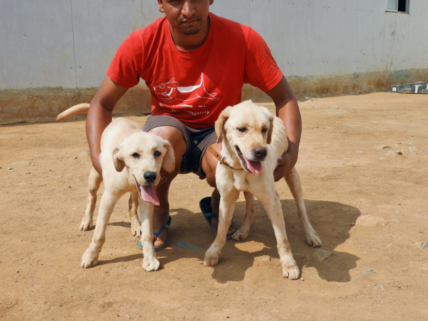 Support WalkofLife: Rehabilitation Program For Angel and Princess