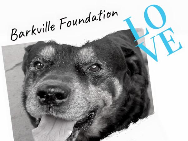 99 Barkville Expansion