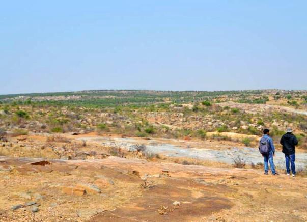 Nandi Hillathon: Improve Green Cover in Chintamani