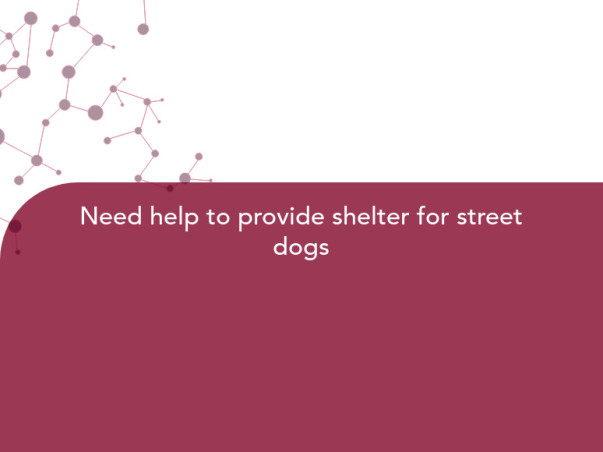 Need help to provide shelter for street dogs
