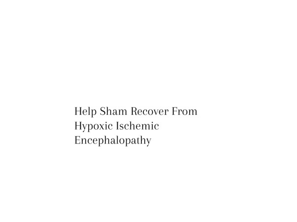 Help Shyam Recover From Drowning Hypoxic-Ischemic Encephalopathy