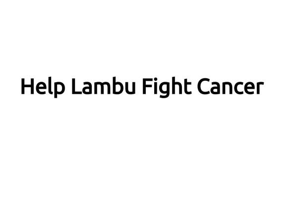 Help Lambu Fight Cancer