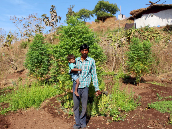 Gift vegetable gardens to 120 families with malnourished children.
