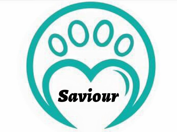 Please help and Be Saviour to save stray animals in needs.