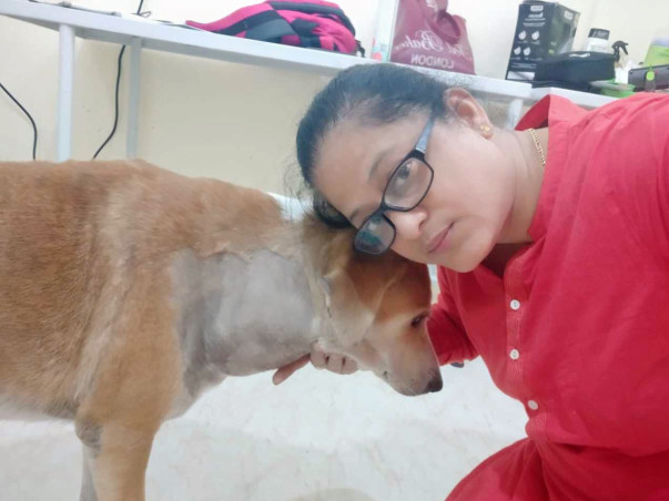 Save a life, Puttu needs you.