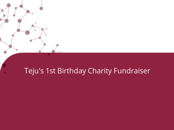Teju's 1st Birthday Charity Fundraiser