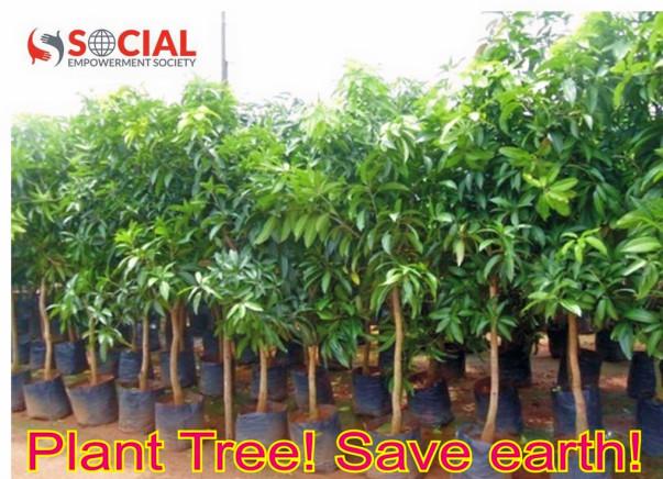 10,000 Tree Plantation in Gorakhpur City of Uttar Pradesh