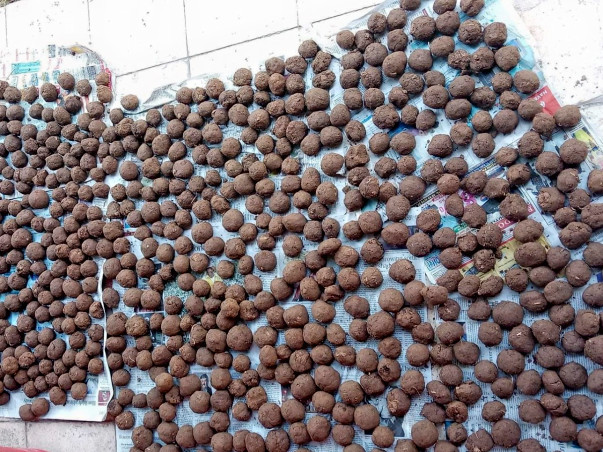 Project One Lakh Seed Bombing in Aravalis