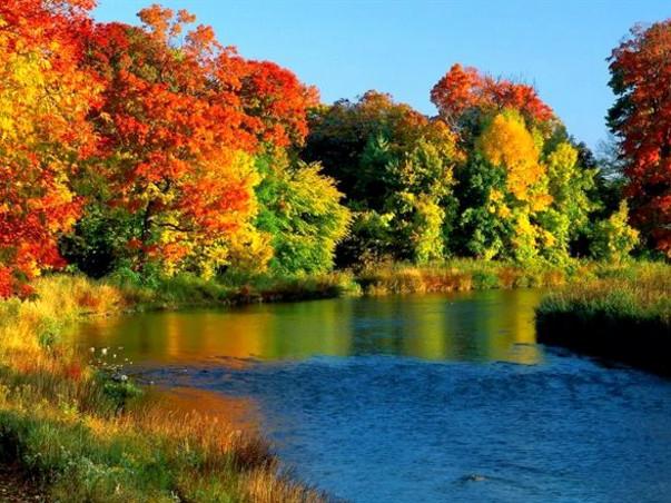 पर्यावरण संरक्षण जीवन का एक ही उद्देश्य और सपना पुरा करने में मदद करे