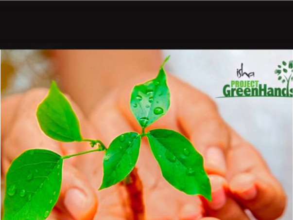 Friends 4Life Go Green Project