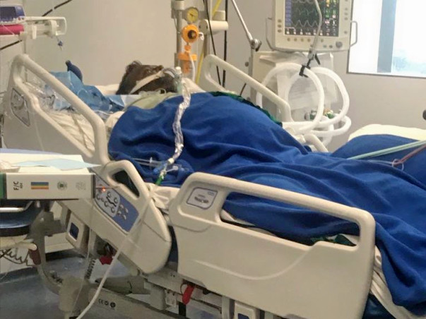 Help Keval Get A Liver Transplant.