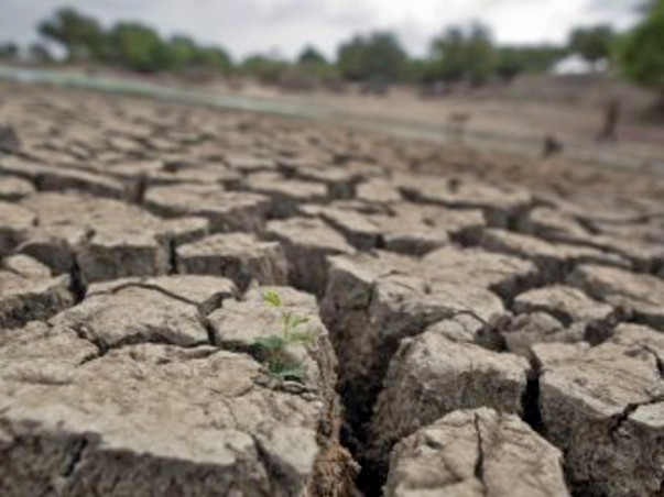 I am fundraising to help Drought affected farmers from Marathwada