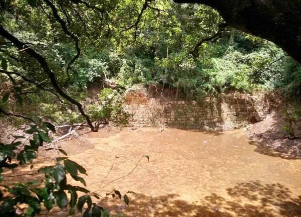 Nandi Hillathon: Rejuvenation of Patalaganga Pond