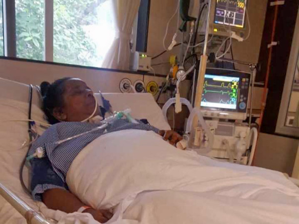 Please Help My Mother Fight Pancreatitis & Multi-Organ Damage