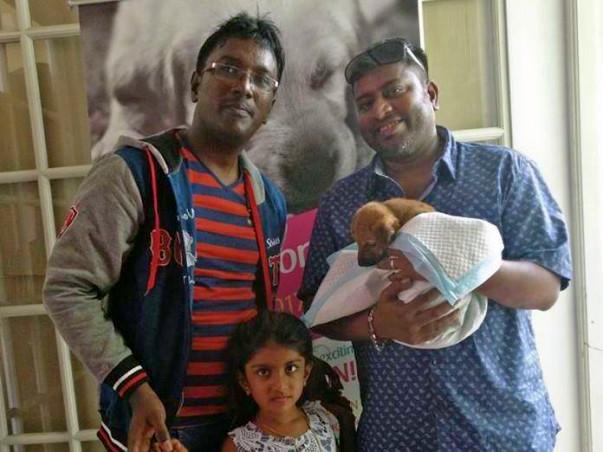 Help Pradeesh Chowraa Pay The Vet Bills For His Rescued Animals