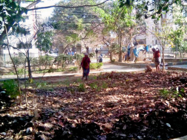 Bengaluru Marathon: Shredding and composting of leaves in HSR Layout