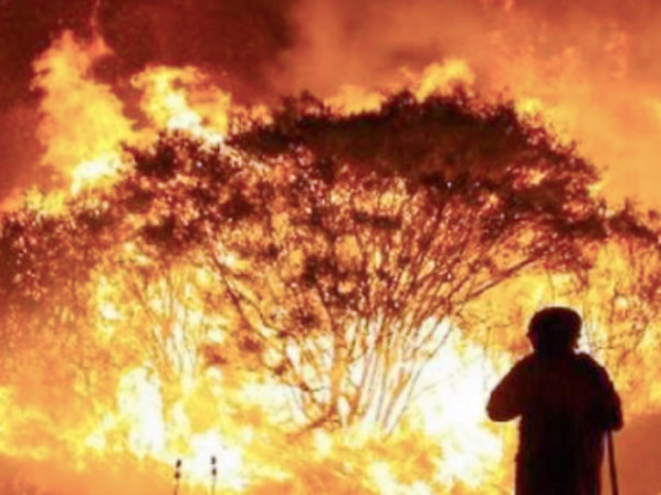 Your Time to Support - Australian Wildfires