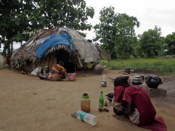 Economic independence for widows of Irular tribe of South India
