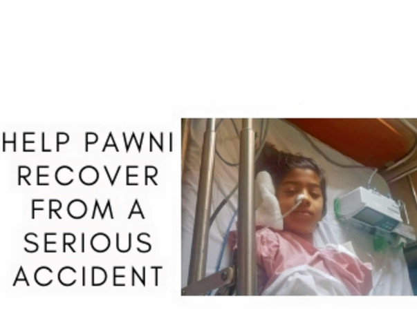 Help Pawni Recover From A Serious Accident
