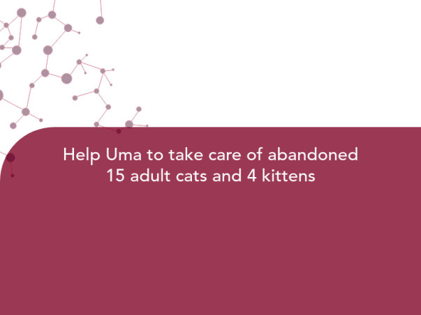 Help Uma to take care of abandoned 15 adult cats and 4 kittens