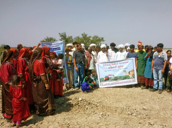 Save the Mangroves of Kutch from Salt Making Industries