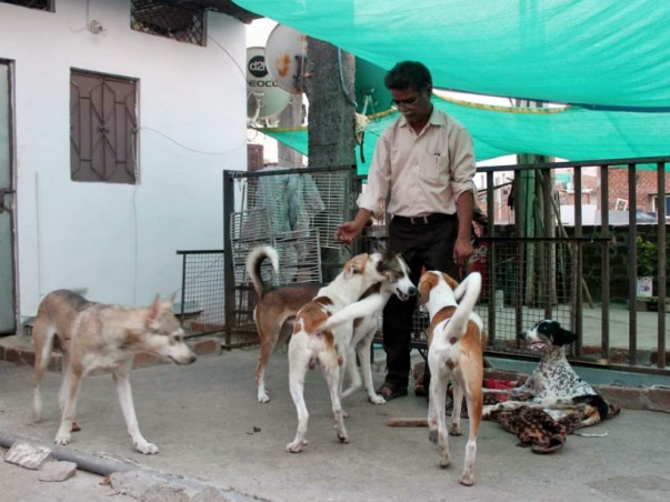 Help Shahrukh To Provide Best Medical Treatment For Animals In Need