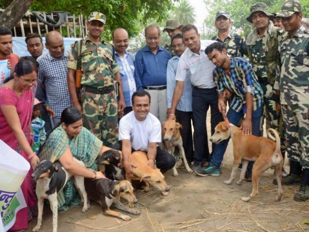 Helping Animals of Bihar