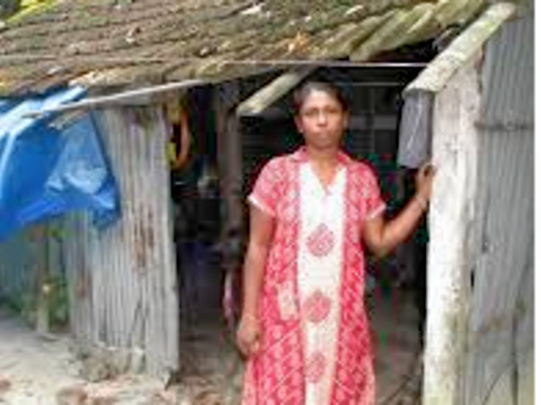 Poverty Elimination Programmer For Widow's  Women