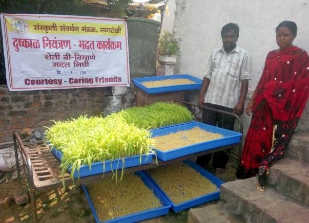 Help Drought affected farmers from Marathwada