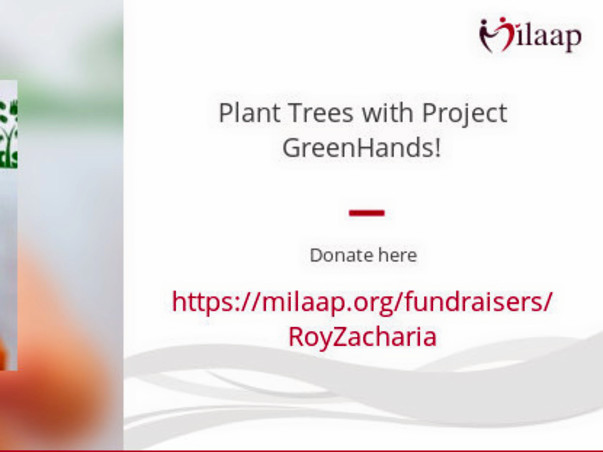 Plant Trees for just Rs. 100