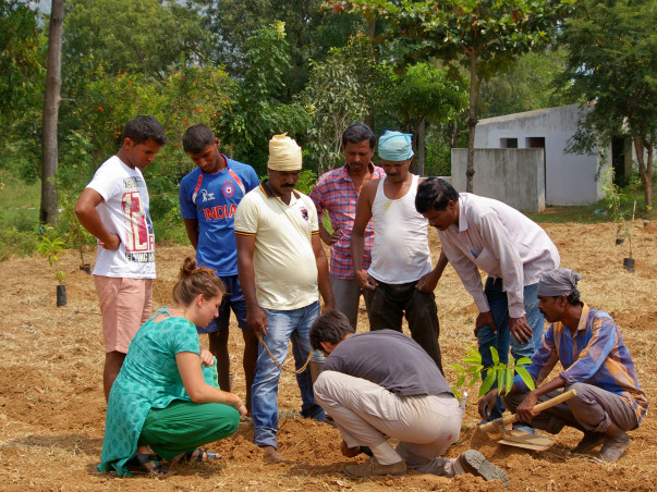Support Small Scale Farmers in Andhra Pradesh