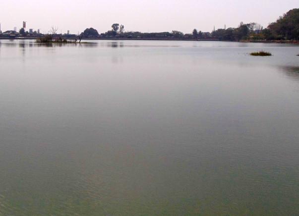 Nandi Hillathon: Restoration of Sankey Tank, Malleshwaram