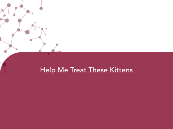Help Me Treat These Kittens