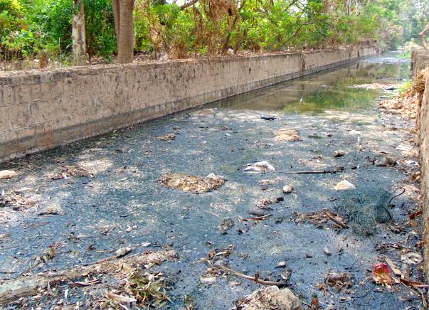 Nandi Hillathon: Restoration of Chellakere Lake