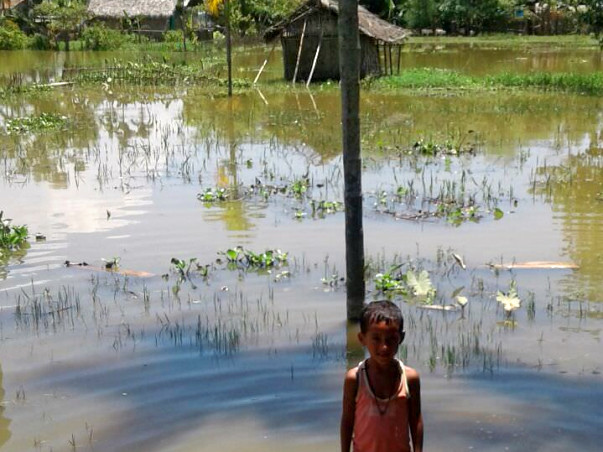 Help Laloo Repair His Flooded Home in Assam