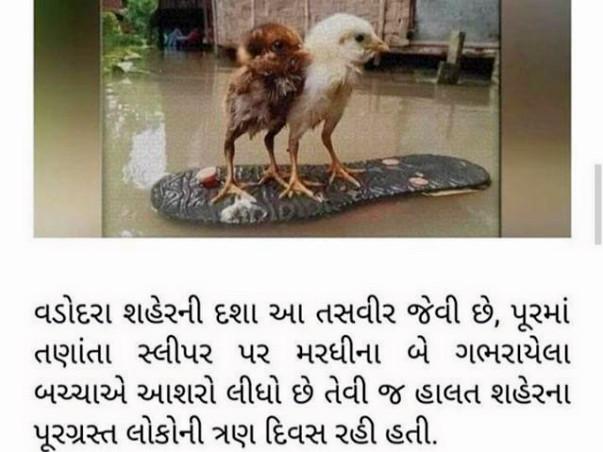 Hand for Vadodara Flood Innocent Victims