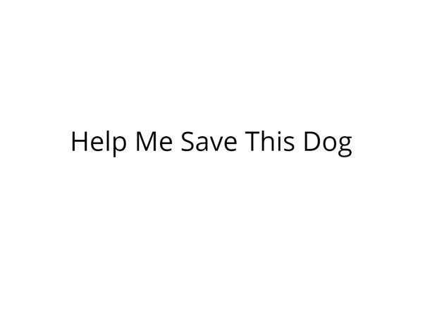 Please Help Us Save This Dog