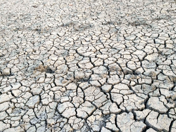 Drought Free Bundelkhand